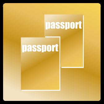 Двойное гражданство в США. Можно ли иметь двойное гражданство в США.  Разрешено ли иметь двойное гражданство в США.